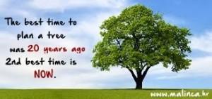 plant a tree - Kopija